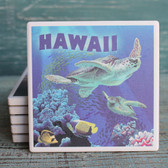 Hawaii Sea Turtles Coaster