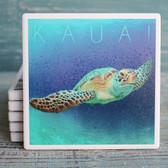 Kauai Sea Turtle Coaster