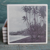 Black and White Palm Tree Photograph Coaster