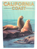 California Coast Sea Lions