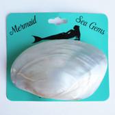 Polished Oyster Shell Hair Clip - Mermaid Sea Gem