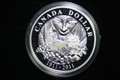 2011 Canada Proof Dollar - 100th Anniversary of Parks Canada