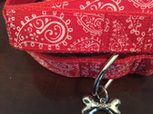 Red and white designer dog collar with matching leash