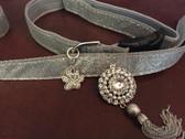 silver dog collar and leash