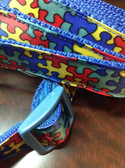 autism awareness dog collar and leash
