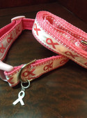Breast cancer awareness dog collar and leash