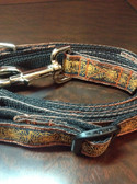 Spiderweb dog collar and leash