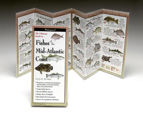 Fishes of the Mid-Atlantic Coast