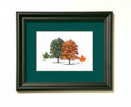 Sugar Maple Tree Print