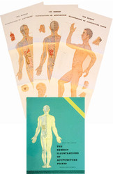The Newest Illustration of Acupuncture Points Posters