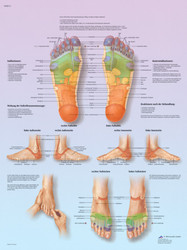 Foot Reflex Zone Massage Poster