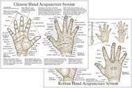 """Chinese & Korean Hand Therapy Hand Acupuncture Chart  8.5"""" x 11"""