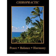 Peace Balance Chiropractic Poster