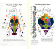Visceral Somatic Pain Anatomical Poster