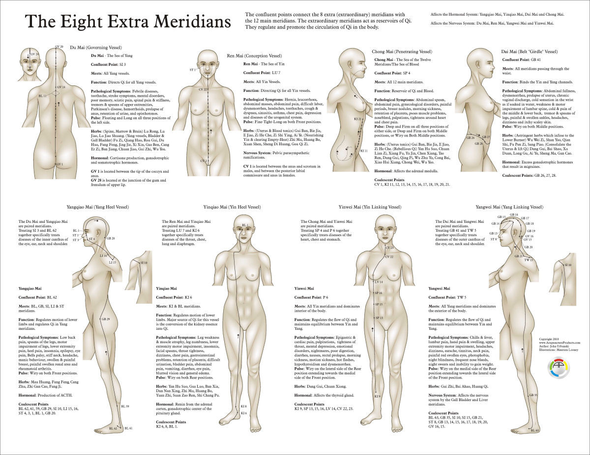 Eight extra acupuncture meridians chart clinical charts and supplies