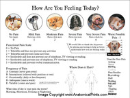 Visual and Functional Pain Scale Poster