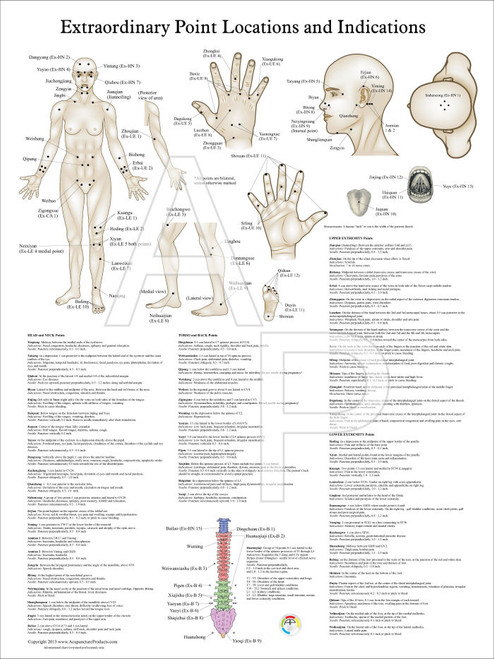 Extraordinary Acupuncture Poster 2nd Ed. - Clinical Charts ...