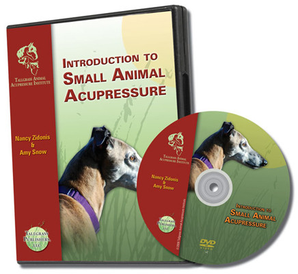 Small Animal Acupressure DVD