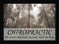 Chiropractic Heals Naturally
