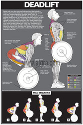 Deadlift Exercise Poster