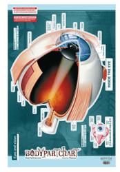 Eye Wall Poster