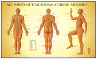 Acupupoints  Chart of  TCM - Male