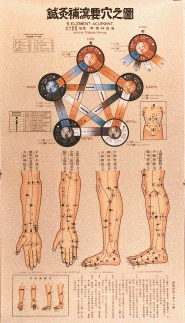 Acupuncture And Reflexology Charts Posters And Cards