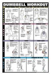 Dumbbell Exercises - Shoulder, Back, Leg, Calf Poster