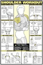 Shoulder Exercise Poster