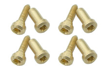 screw for cover plates - Marine Band Crossover, Thunderbird and Octave, Auto Valve