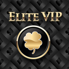 The Elite VIP Package
