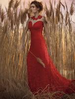 Olvi's Trend Lace Short Sleeve Sheer Lace Deep V-Neck Red Dress