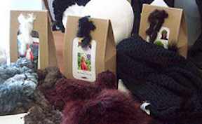 Paula Lishman Fur Yarn