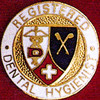 REGISTERED DENTAL HYGIENIST EMBLEM PIN - GPE-1089