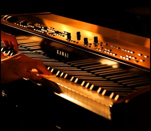 Digital Pianos from Sheargold Pianos