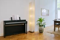 Kawai CN29 Digital Piano Bundle