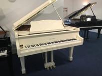 "Reid Sohn SIG50-D 5' 0"" Grand Piano"