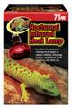 Nocturnal Infared Heat Lamp 75 Watt