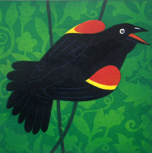 Red-Wing Black Bird