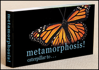 Butterfly Metamorphosis Flipbook Cover