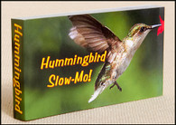 Hummingbird Slow-Mo! Flipbook Cover