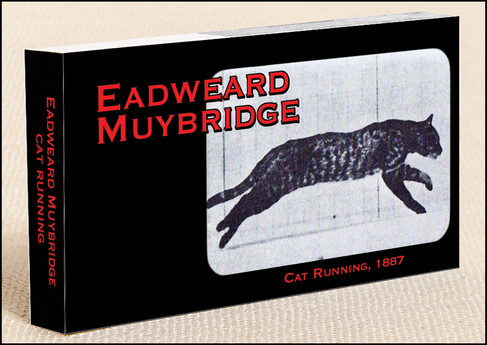 Muybridge Cat Flipbook