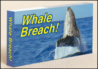 Whale Breach Flipbook