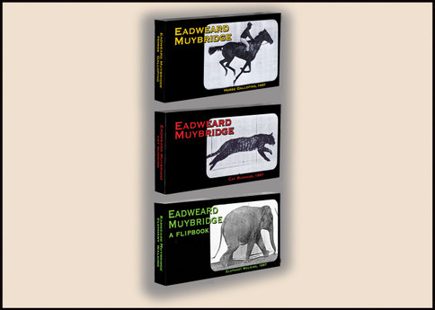 Fliptomania Muybridge Animal Flipbook 3-Pack