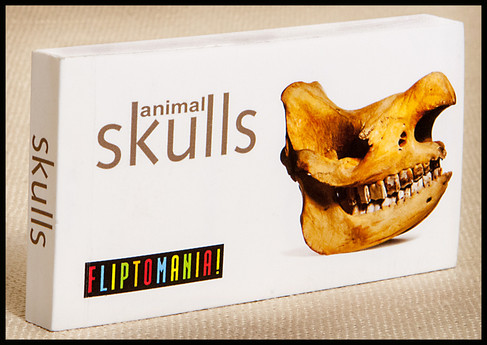 Fliptomania Animal Skulls Flipbook