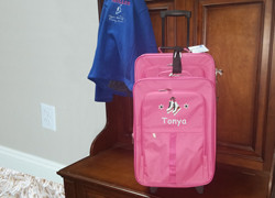2 piece pink luggage set