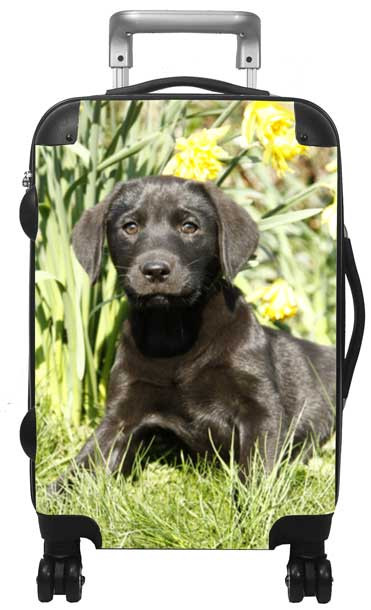 Kids Hardside Photo Luggage Lab Puppy