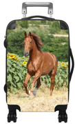 Kids Hardside Photo Luggage Horse Running