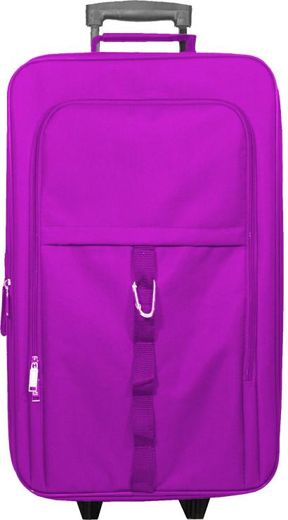 Purple Kids Carry-On