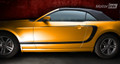 2013-2014 Ford Mustang Reverse C -stripe  Side Stripes Decals